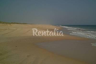 Playa Doñana - Playa del Parque Nac. de Doñana