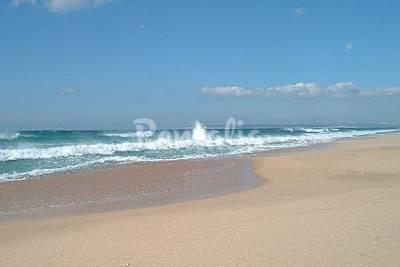Playa Zahara de los Atunes en Barbate - Cádiz - Apartamentos y casas de vacac...