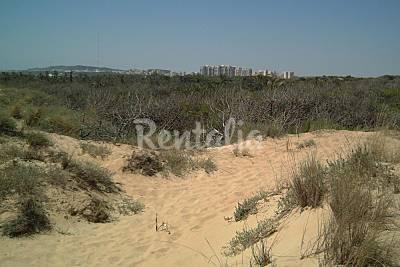 Los Tusales beach
