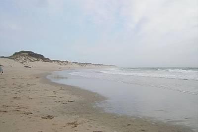Ofir beach