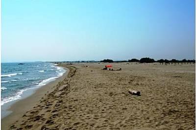 Playa Can Comes - Photo 1