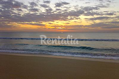 Comporta beach - Photo 1