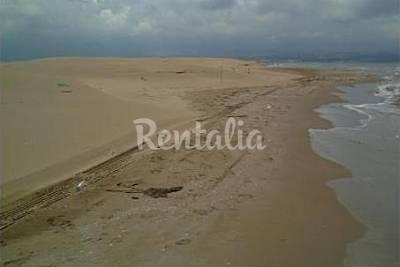 Playa La Punta del Fangar