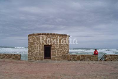 Playa Torrelamata (La Mata) - Photo 1