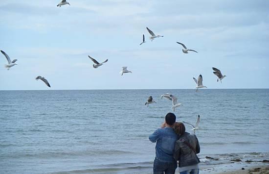 Fotos praia islantilla isla cristina 4 15 - Rentalia islantilla ...