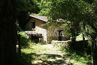 Cabine House in forest in Asturias Asturias