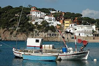 Apartamento para 8 personas a 100 m de la playa Girona/Gerona