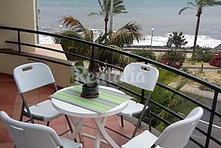 Apartment  Isle of Madeira