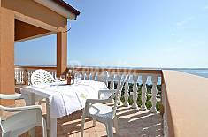 Apartamento en alquiler a 500 m de la playa Zadar