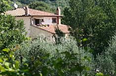 Villa en alquiler con piscina Terni