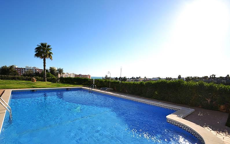 Magnifica Piscina Algarve-Faro Silves casa - Piscina