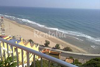 Apartment with 1 bedroom only 35 meters from the beach Valencia