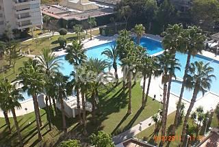 Apartamento, urb. Garden, playa San Juan Alicante Alicante