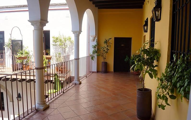 Apartamento en alquiler en c rdoba centro el tejar benamej c rdoba - Apartamentos turisticos la castilleja cordoba ...