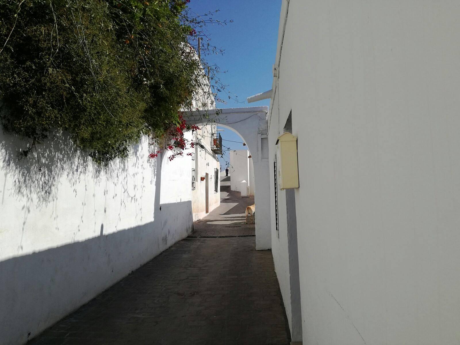 Casa en alquiler a 2 km de la playa moj car almer a costa de almer a - Apartamentos alquiler mojacar ...