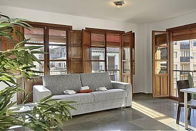 Apartamento puerta de la catedral/ cathedral flat  Granada