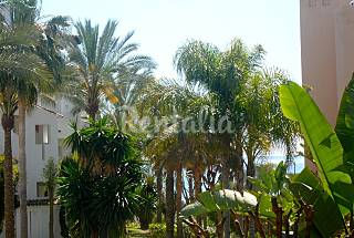 Apartment for rent only 30 meters from the beach Málaga