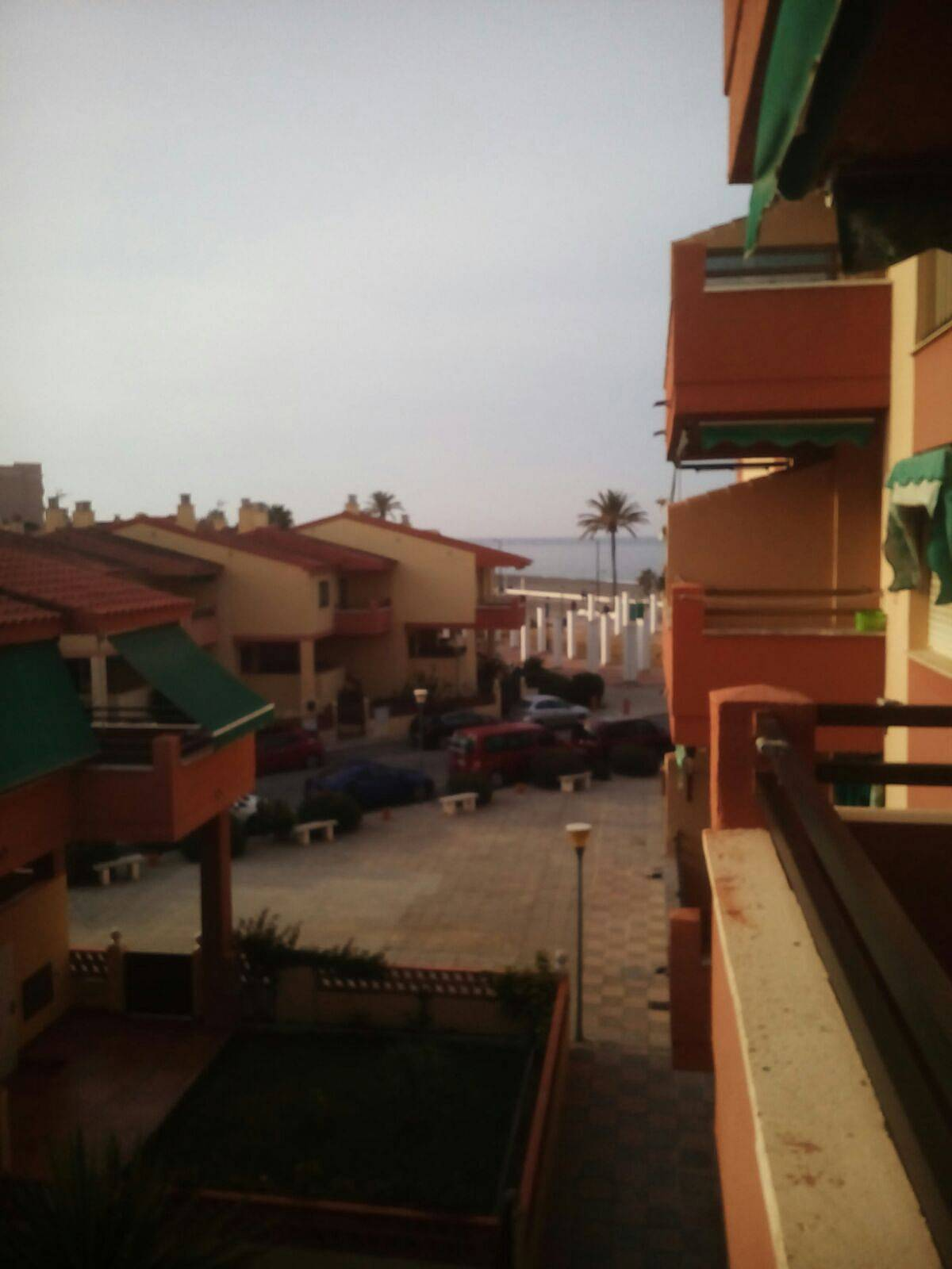 Apartamento en alquiler a 30 m de la playa salobre a granada costa tropical - Apartamentos en granada playa ...