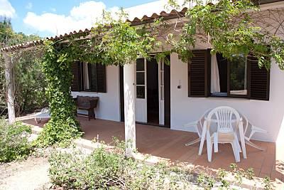 Mazulis, estudio 5 Algarve-Faro