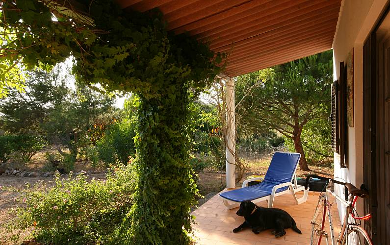 Villa Terrace Algarve-Faro Lagos villa - Terrace