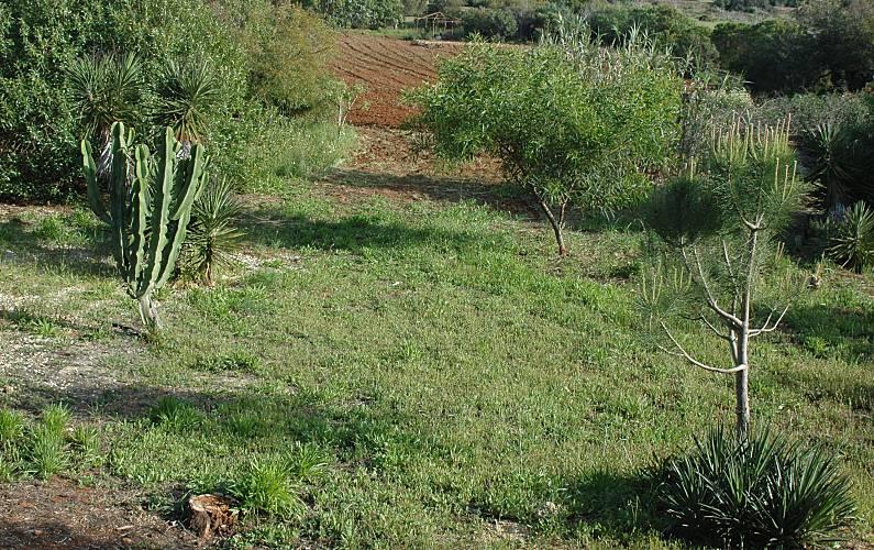 Villa Environment Algarve-Faro Lagos villa - Environment