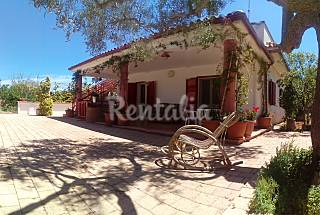 Villa with 2 bedrooms 2.5 km from the beach Lecce