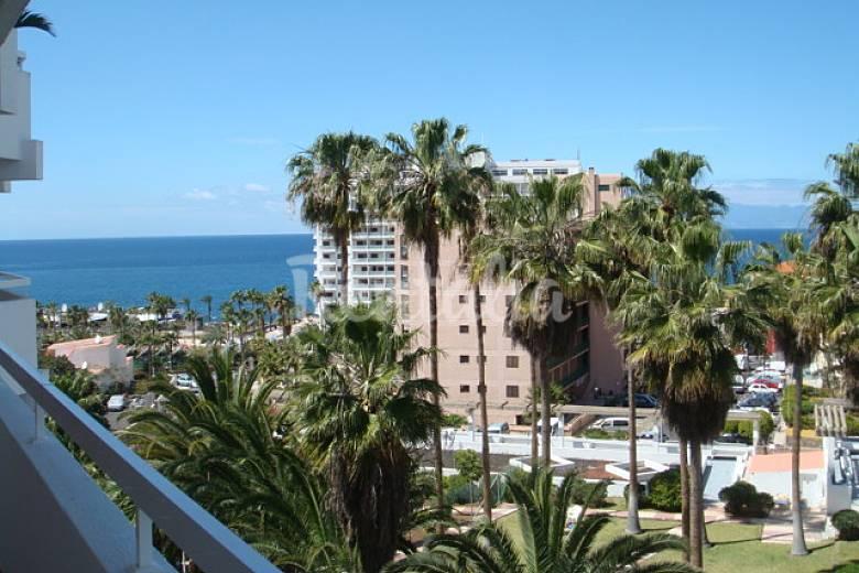 Appartamento in affitto a 100 m dal mare playa de las americas adeje tenerife - Apartamentos en playa san juan tenerife ...