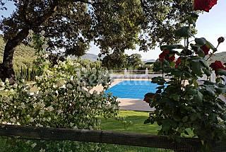 Casa en alquiler en Ventas del Carrizal Jaén