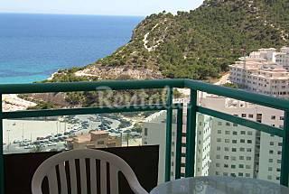 Vistas mar y montaña;zona llana;WIFI Alicante