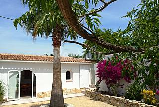 House with 2 bedrooms 7.5 km from the beach Alicante