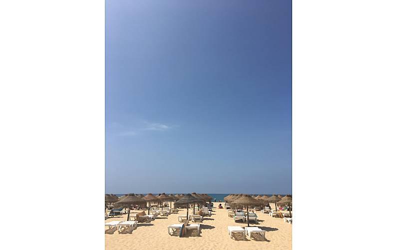 T1 Actividades próximas Algarve-Faro Loulé Apartamento - Actividades próximas