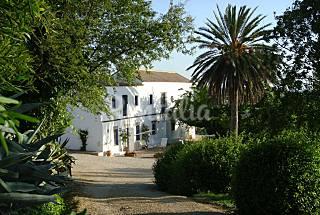 Villa pour 410  personnes avec piscine Cadix