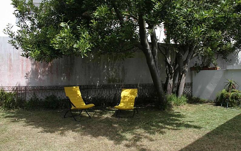 Vivenda Jardim Braga Esposende vivenda - Jardim