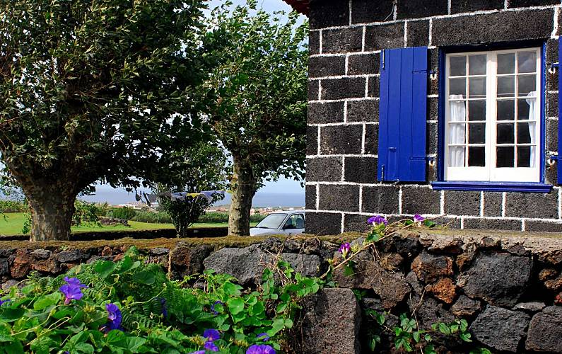 House Outdoors São Miguel Island Ribeira Grande Countryside villa - Outdoors