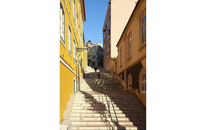 Holiday Environment Lisbon Lisbon House - Environment