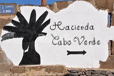 Villa  Gran Canaria Moya Villa en entorno rural