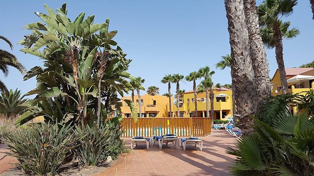 Apartamento en alquiler en la oliva corralejo playa la oliva fuerteventura - Alquiler de apartamentos en oliva playa ...