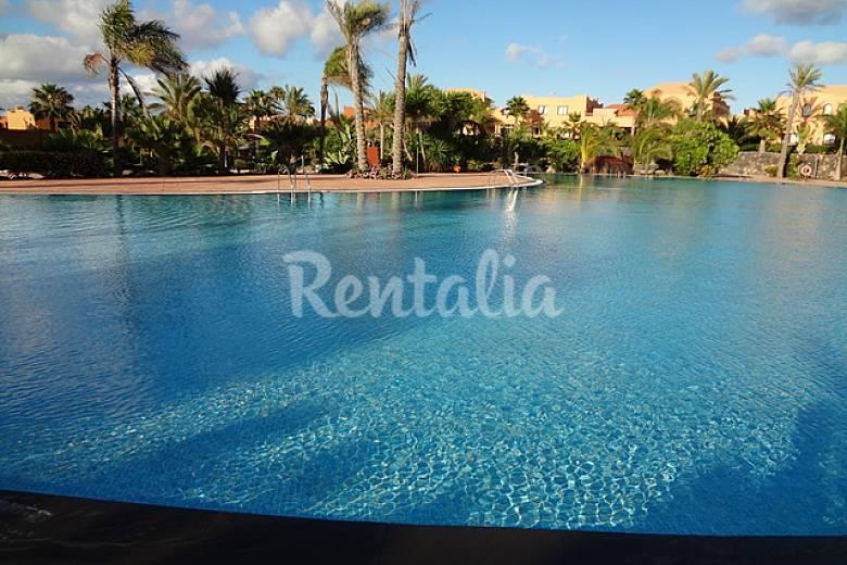 Apartamentos con piscinas de agua salada corralejo la - Piscinas agua salada ...