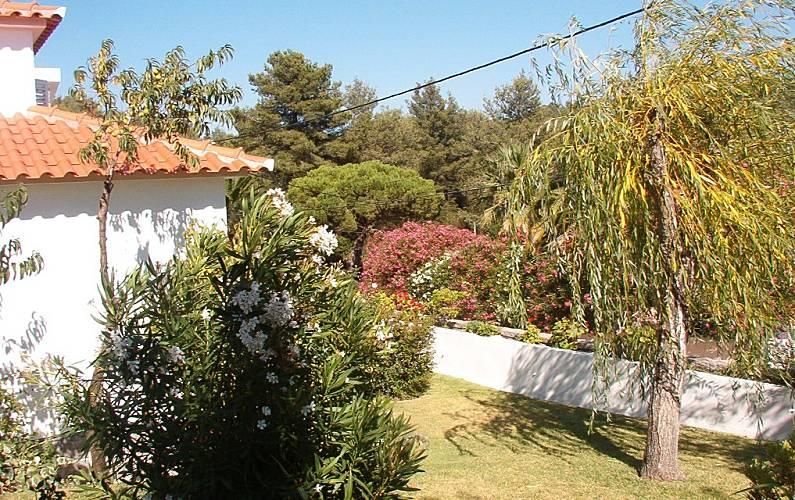 House Garden Lisbon Sintra villa - Garden