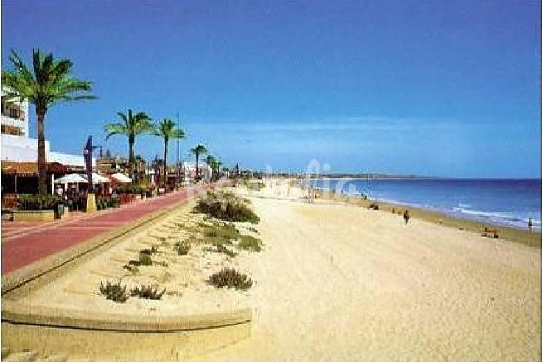 Chiclana apartamentos 500m playa barrosa piscina la for Piscina 50 metros cadiz