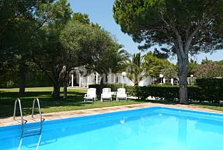Chalet alquiler con piscina a 250 m playa   Cádiz