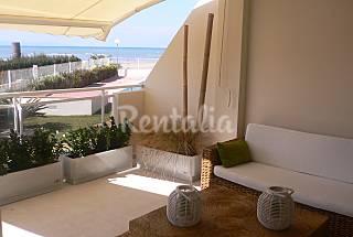 apto. bajo directo a jardin en 1ª línea de playa Alicante