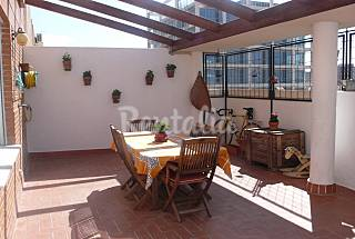 Penthouse with garden of Turia and Bioparc Valencia