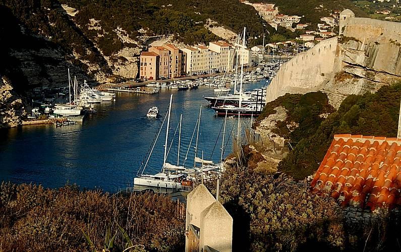 Meravigliosa Corsica del Sud Lecci villa -