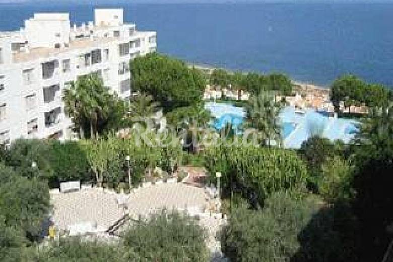 Apartamento para 4 6 personas a 2 km de la playa gran - Urbanizacion el faro gran alacant ...