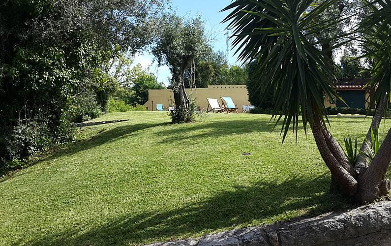 Casa para 10 personas con piscina casais lousada oporto for Casa rural para 15 personas con piscina