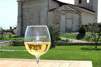 Complejo rural con piscina hasta 60 pers.  Burgos