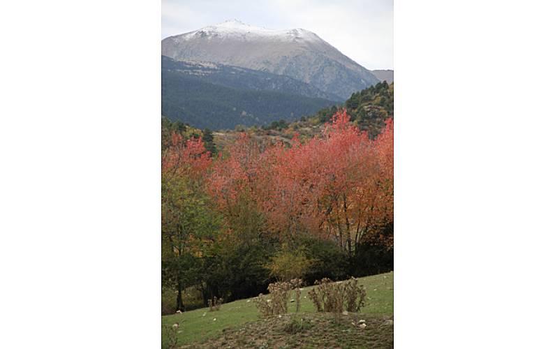 Casa Alrededores Lleida/Lérida Bellver de Cerdanya Casa en entorno rural - Alrededores