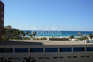 Apartment with 1 bedroom on the beach front line Alicante