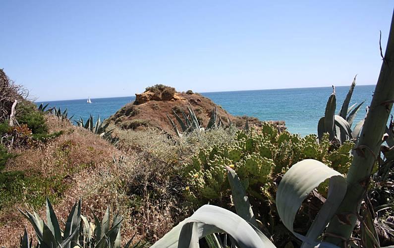 Apartamento, Actividades próximas Algarve-Faro Albufeira Apartamento - Actividades próximas